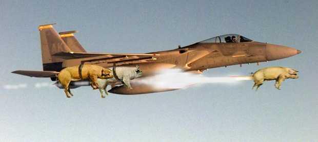 aeroporc3.jpg
